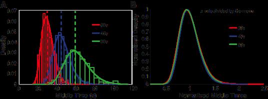 An adaptive drift-diffusion model of interval timing dynamics
