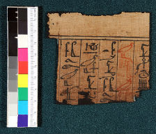 Papyrus Fragment with Hieroglyphics