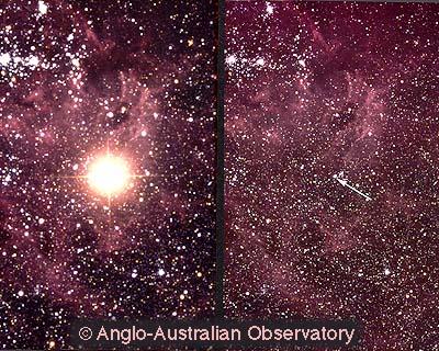 http://www.oberlin.edu/physics/dstyer/Astronomy/Supernovae/SN1987A.jpg